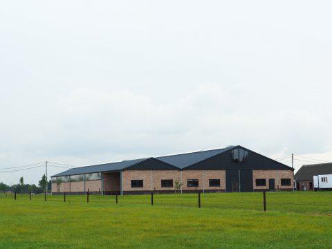 Nieuwbouw van een rijhal met stalruimte in België